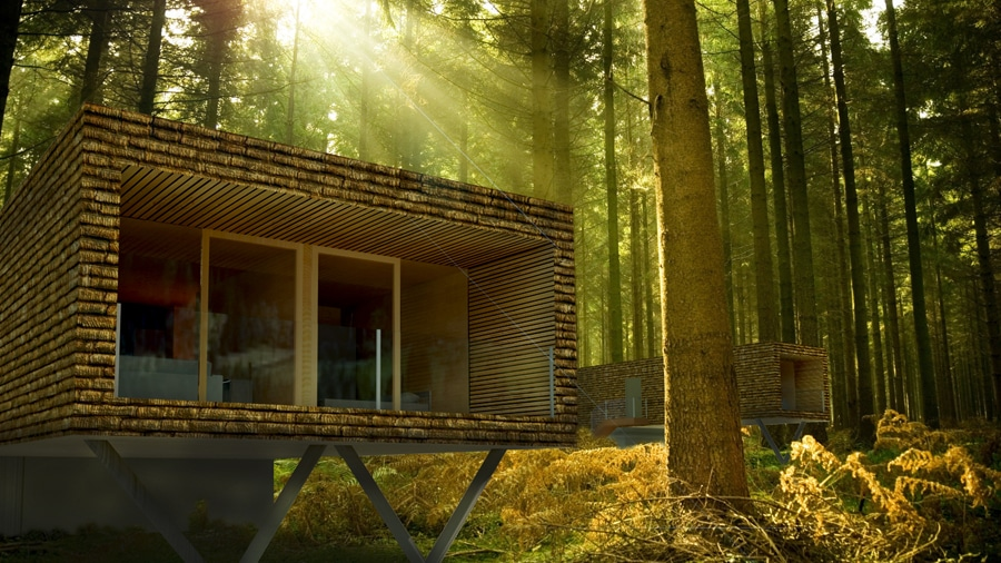 Tourismuskonzept Urlaub im Wald